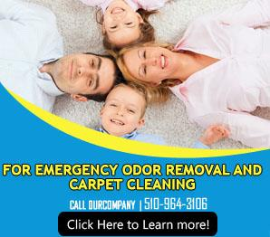 Water Extraction - Carpet Cleaning Fremont, CA